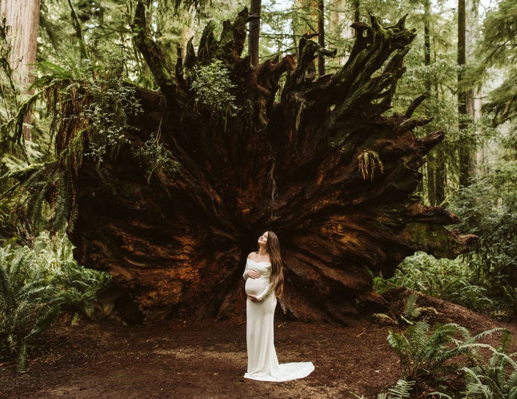A pregnant bride is holding her belly and standing next to the roots of a fallen tree in the forest.