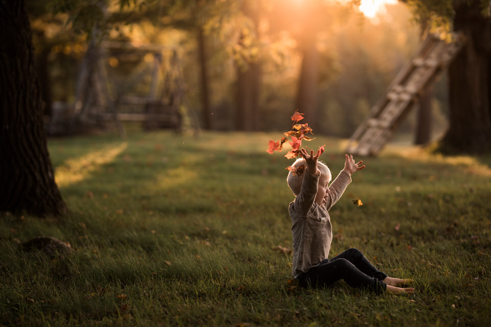 A child is sitting in a meadow and throwing leaves up in the air.