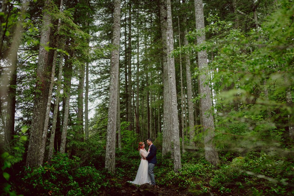 A wedding couple standing between two trees in a forest.