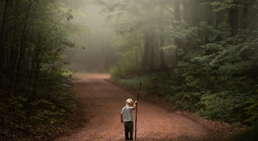 A child is standing on a path in the forest and holding onto a stick.