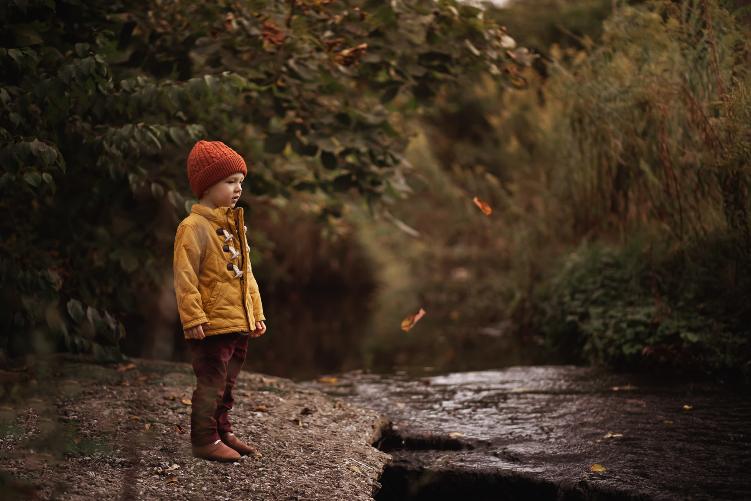 A child is standing in the forest at looking at leaves falling down from trees.