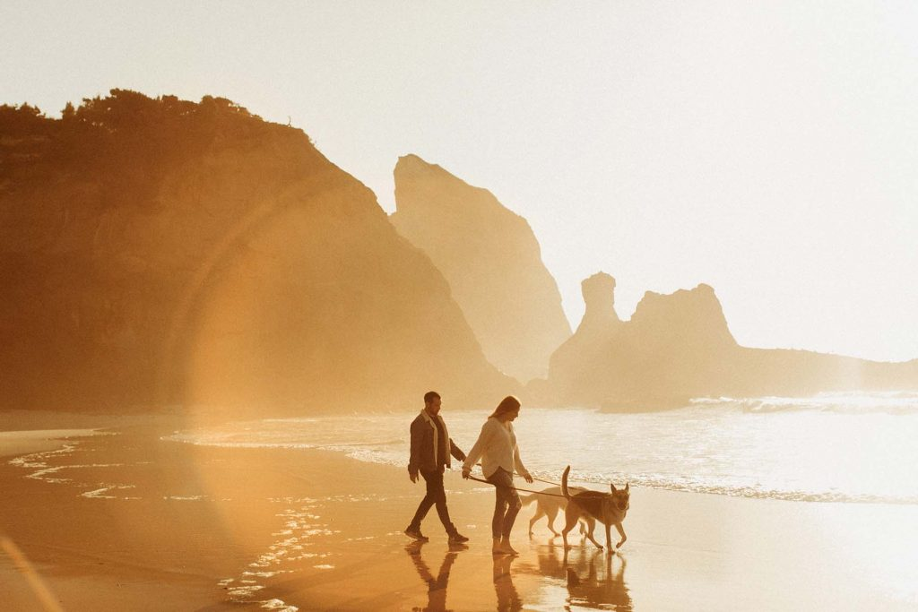 A woman and a man walk with their dogs at the beach at sunset time.