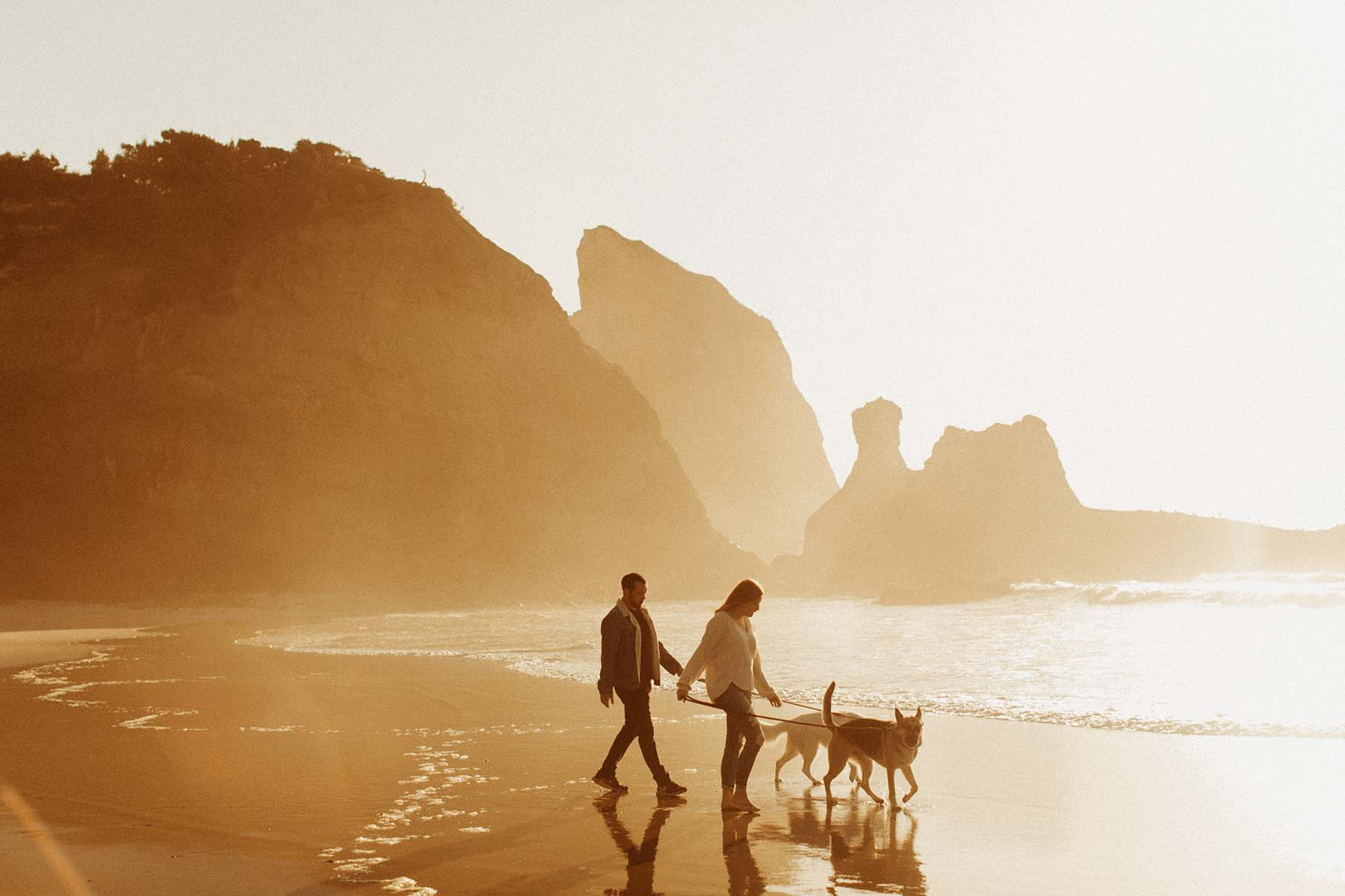 An unedited photo of a woman and a man walk with their dogs at the beach at sunset time.