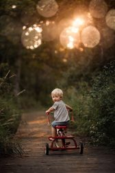 A little child is riding a tricycle through a forest path.