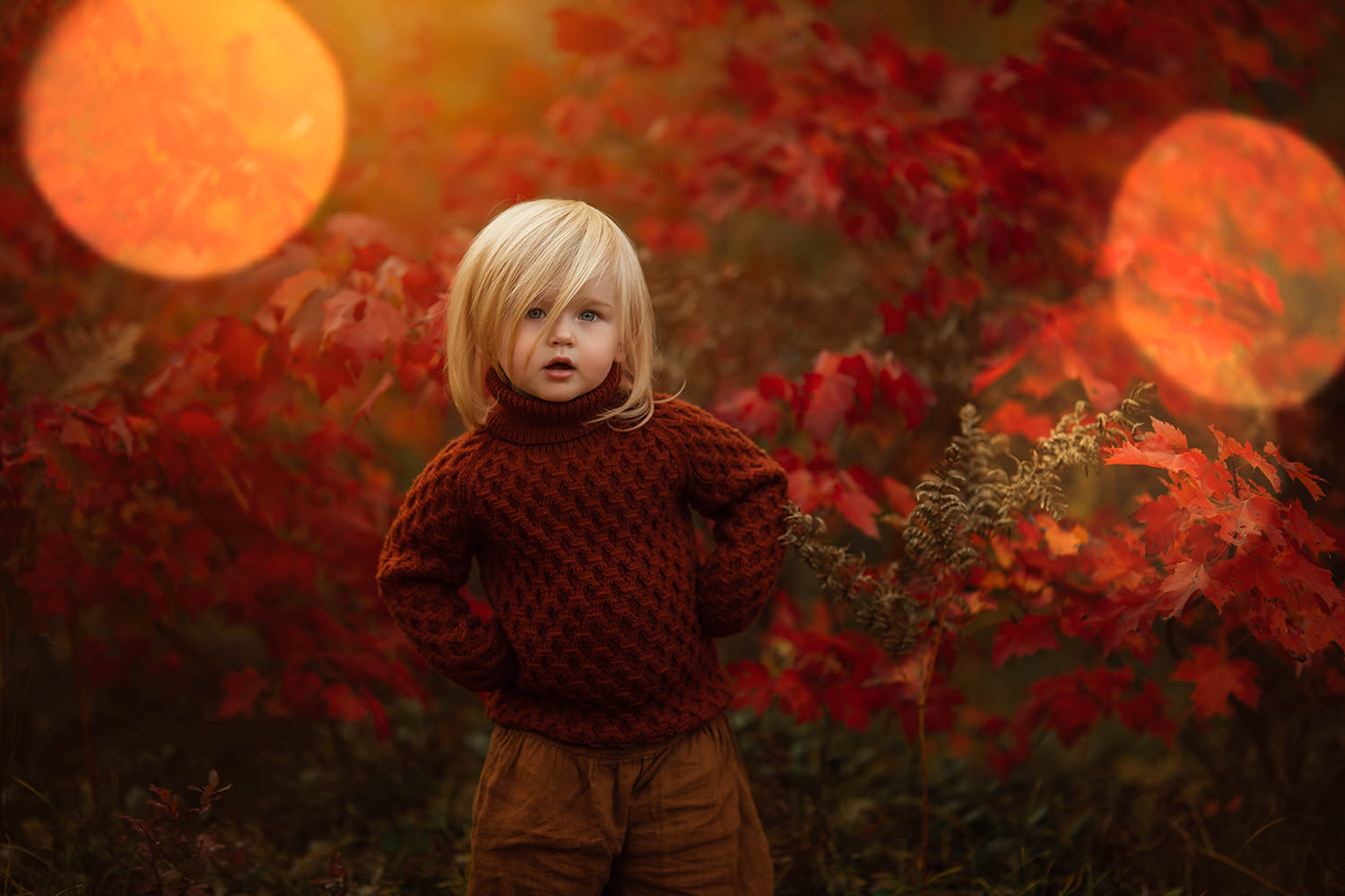 A small child is standing in a meadow with red leaves or flowers behind her.